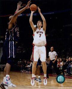 Andrea Bargnani Toronto Raptors Licensed NBA Unsigned Glossy 8x10 Photo B