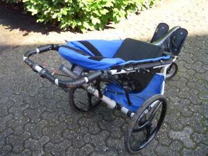 Buggy Reha Kinderwagen System Kangoo Assmann