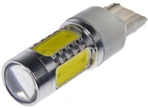 Turn Signal Light   Dorman   7440W-HP