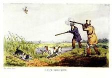 English Setter, Snipe Shooting, Bird Hunting Gun Dog 1903 Alken Print