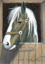 ACEO original pastel drawing horse pony  by Anna Hoff