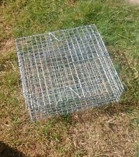 TWO X SQUIRREL, RAT MULTI CATCH-ALIVE TRAP CATCH MULTIPLE PESTS IN 1 GO UK MADE