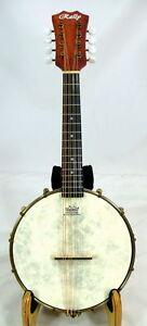 Rally Banjo mandolin, quality mahogany, open geared tuner, free hard case, DMB-1