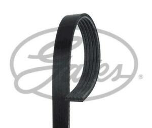 FOR CADILLAC ATS CTS 2.0, 2.0 Turbo GATES 5PK1750 Alternator Belt: 12664598