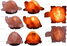 Elefant 2-3 kg Elektrisch Himalayasalz Tischlampe Kristall Rock Natürlich