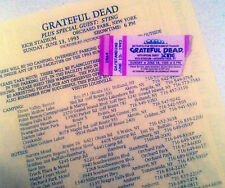 Grateful Dead 6-13-93 Rich Stadium Mail Order Ticket Stub & M.O./Show Info Sheet