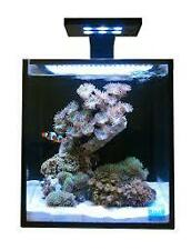 Innovative Marine Nuvo Aquarium Fusion 10 Nano with 18w Skkye Clamp LED
