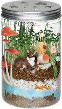Fairy Garden Science Kit Glow in the Dark Terrarium Kids Grow Plants Mason Jar