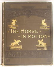 1882 THE HORSE IN MOTION AS SHOWN BY INSTANTANEOUS PHOTOGRAPHY by J.D.B Stillman
