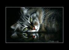Tabby Cat Print Reflective Mood by I Garmashova
