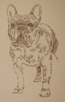 FRENCH BULLDOG DOG ART PORTRAIT #47 Kline draws your dogs name free GREAT GIFT