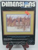 Dimensions WAITING FOR SPRING No Count X Stitch Kit Canadian Geese Birds Snow