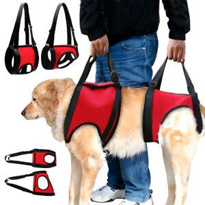 Dog Lift Harness Full Body Injury Back Hip Assist Rehabilita Carry Walk Support
