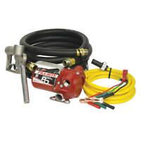 FILL-RITE RD1212NH DC Pump,10 ft.Power Cord, Rotary Vane