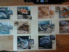 PHQ 390 - SUSTAINABLE FISH - 2014 - 10 CARDS FDI FRONT PICTORIAL HANDSTAMPS