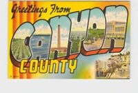 BIG LARGE LETTER VINTAGE POSTCARD GREETINGS FROM IDAHO CANYON COUNTY