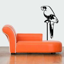 Wall Vinyl Sticker Decals Mural Design Mural Art Pirate Bird Poll-Parrot #883