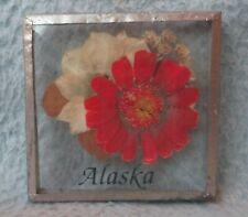 Dried Flowers Alaska Magnet Souvenir Travel Refrigerator