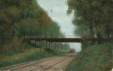 Richmond Hill L.I. NY * Forest Park Bridge ca. 1908  Train RR