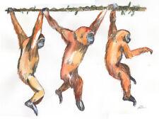 EDIZIONE LIMITATA fine art print-Trio di scimmie (Large incorniciato) - regalo perfetto