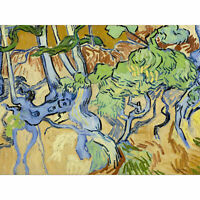 Van Gogh Tree Roots Painting Wall Art Canvas Print 18X24 In