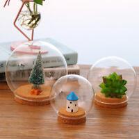 Deko Glasglocke mit Holzboden , Transparent Glas Behälter Micro Landschaft
