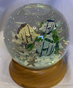 Tropical Fish Glitter Snow Globe Dome