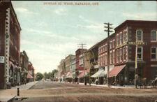 Napanee Ontario ON Dundas St. West c1910 Postcard