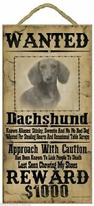 """Wanted Western Poster Style Dachshund Funny Dog Pet Sign Plaque 5""""x10"""""""