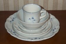 Pfaltzgraff Poetry 5 pc Place Setting Dinner & Salad Plates, Bowl, Cup & Saucer
