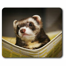 Computer Mouse Mat - Ferret Hammock Pet Rodent Animal Office Gift #16329