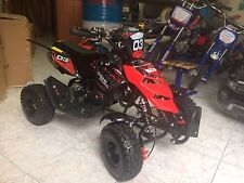 "MINI QUAD NEW INTERCEPTOR RUOTE DA 4"" 50CC 2 TEMPI SOTTOCOSTO,"