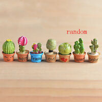 DIY Mini Miniature Fairy Garden Ornament Decor Pot Craft Cactus AccessoriesATAU
