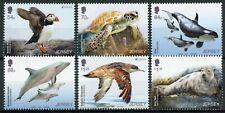 More details for jersey europa stamps 2021 mnh endangered national wildlife birds turtles 6v set