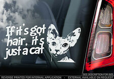 Sphynx - 'If it's got hair, it's just a Cat' - Car Window Sticker - Sign Gift