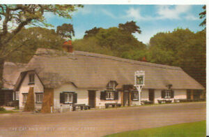 Hampshire Postcard - Cat and Fiddle Inn - New Forest - Ref TZ5959