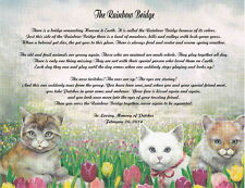 Pet Memorial Poem The Rainbow Bridge For Loss of Pet Cat