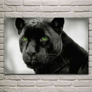 Animal Black Panther print Green eye canavas posters wall art home decoration