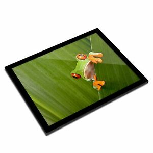 A3 Glass Frame - Cool Green Frog Nature Frogs Art Gift #3682