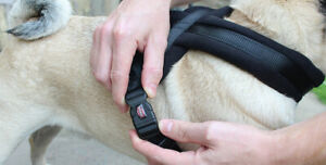 Trixie Premium Touring Dog Harness Adjustable Strong - Thick Soft Fleece Padding