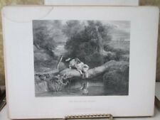 Vintage Print,DOG+THE SHADOW,Gallery,British Art,D.Appleton
