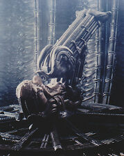 "Ridley Scott Alien Space Jockey 10"" x 8"" Glossy Photograph Still"