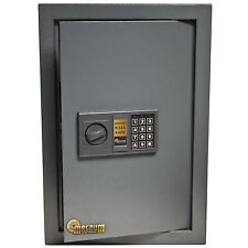 Magnum 0.585 Cubic Ft. Wall Safe Security office Home Jewelry Gun 52539