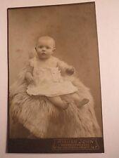 Neuhaldensleben - auf einem Fell sitzendes Baby - kleines Kind- Portrait / CDV