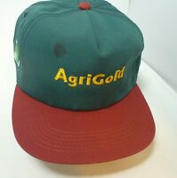 VTG New Embroidered Agrigold Patch Snapback Green Farmers Seed Trucker Hat Cap