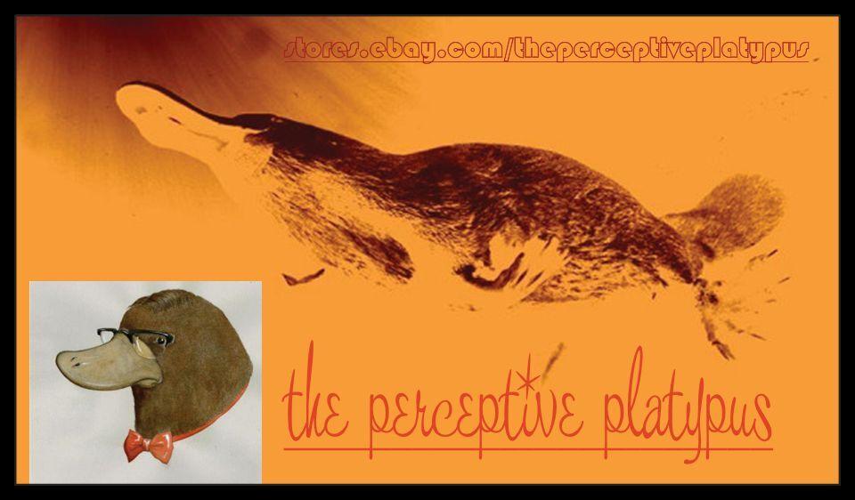 the perceptive platypus