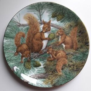 Wedgwood THE SQUIRREL PLATE, Retro, vintage, shabby chic