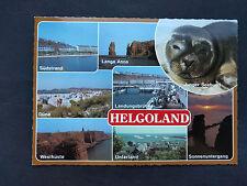 Alte Ansichtskarte mit Seehund - Helgoland