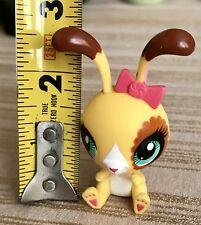 Original Hasbro Littlest Pet Shop LPS Toys Animals Rabbit Bunny