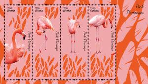 Guyana - 2014 - Pink Flamingos - Sheet Of 4 - MNH
